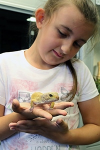 small child with a reptile