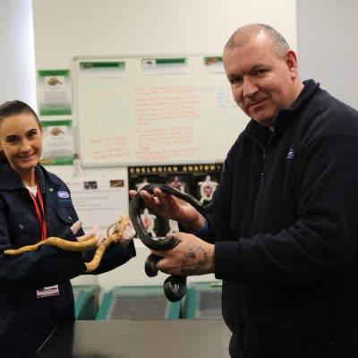 Laura and Glenn hold snakes